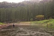 九州における渓流釣り