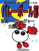 東京家政大学バレーボール部さんのプロフィール