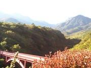 八ヶ岳通い&住む coolpain19のブログ