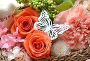 花をアレンジして素敵女子になれる 販売 教室
