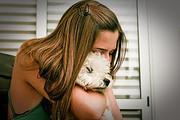 犬が亡くなった時の葬儀と供養の飼い主の役割
