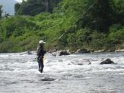 毎日日曜日鮎釣りと共に