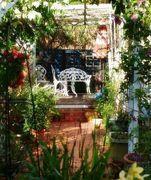 沖縄ガーデニング ブーゲンと薔薇の見える窓から
