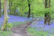 イギリス発 山日記&風景写真