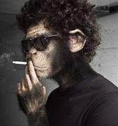 煙猿アニキの禁煙治療体験ブログ!