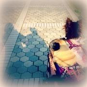 ☆来夢奏音☆ by Angel