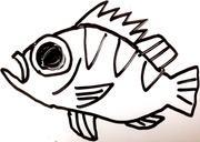 kenny+の釣り日記