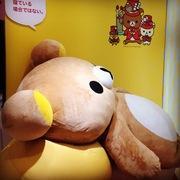 midukiさんのプロフィール