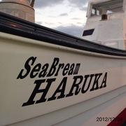 SeaBream HARUKA Blog