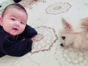 孫と愛犬とおばあちゃん