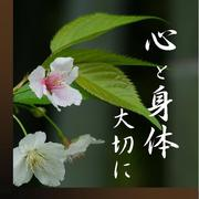 華の一氣功  ほんのり心の庵(いおり)