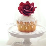 Cupcakes by Yuyu