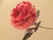 布の花と遊ぼう