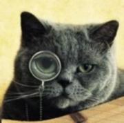 猫カフェを開きたい!