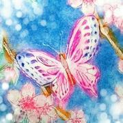 蝶子の Bloomin' Days〜日商簿記2級目指して〜
