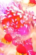 *nat*のモニター☆おしごとブログ