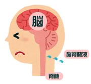 脳脊髄液減少症 目指せ完治ブログ