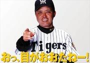 阪神タイガース速報