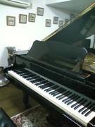 大田区 馬込のピアノ教室 アンダンテのブログ