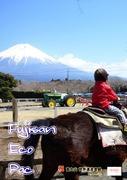 富士の麓で考えるブログ。(地元住人ブログ)