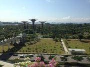 シンガポールで働くということ。