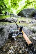 trout & photograph