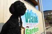 Wan's Gardenブログ