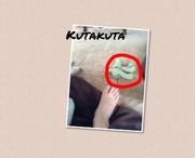 kakizouのブログ