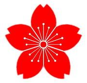 上川神社の気ままに桜たより