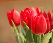 花より男子二次   類つく  変わらない愛を君に・・・