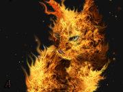 黒猫のFXトレード備忘録