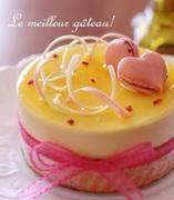 Le meilleur gâteau! ル・メイユールガトー!