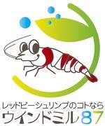 エビ飼育繁殖のウインドミル87 シュリンプブログ