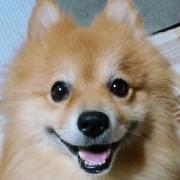 僕の名前は、花沢類。