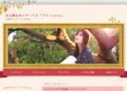 名古屋社会人サークル アミィのお知らせ・ニュース