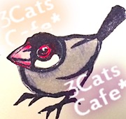3cats cafe
