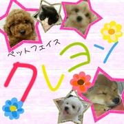 ペットフェイスクレヨンのBlog