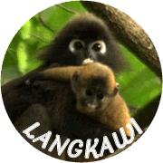 ランカウイナビ〜マレーシア・ランカウイ島情報サイト