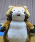 たぬきの子育て情報帖〜絵本と育児書〜