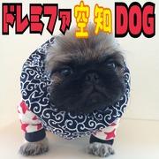 ドレミファ空知DOG☆豚狼伝説
