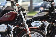 Life with Sportster