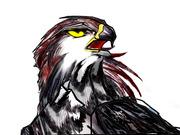 鷹戦士学園4コママンガ