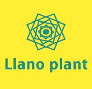 Llano plant ラノ プラントさんのプロフィール