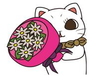 FLORIST CATS〜世界のお花〜