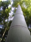 バンブージャパン 竹は資源