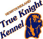 True Knight Kennel