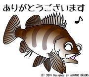 Fishing-Naviさんのプロフィール