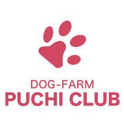 今日のワンコ ドッグファームプチクラブのブログ