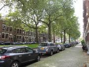 世界にはオランダがある。