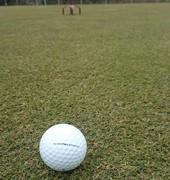 ゴルフとかいうクソゲーwww